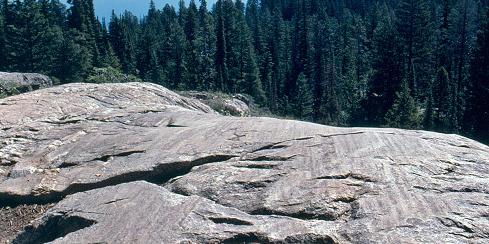 Igneous diabase dikes squeezed into metamorphic gneiss and igneous granite throughout the Tetons.